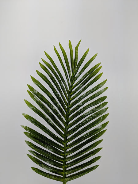 Short Palm Leaf LX0018