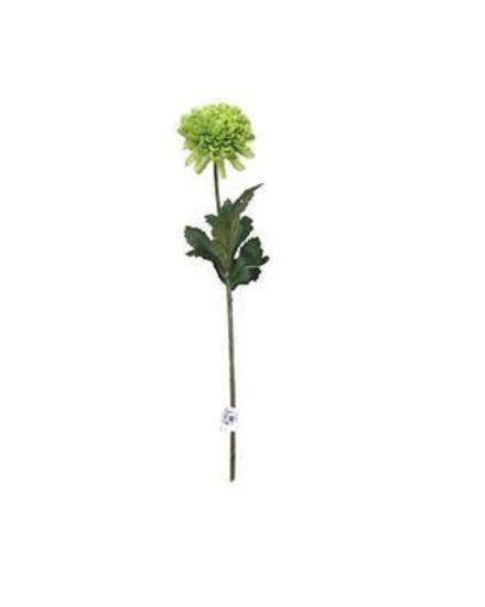 Chrysanthemum Mini Ball JI2467-GR