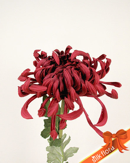 Real Touch Spider Chrysanthemum/MXFM01300_RED