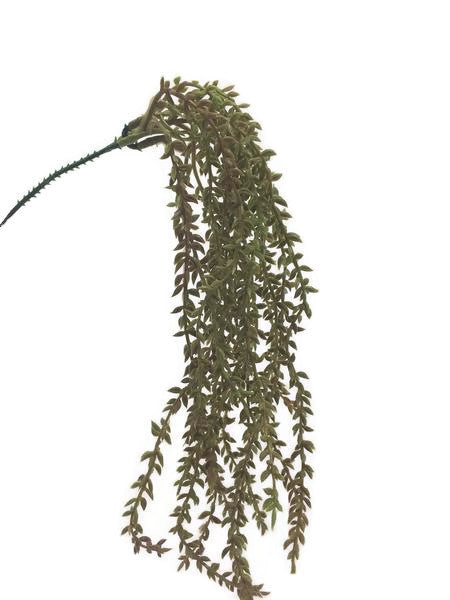 Mini hanging bush RH0026-DGR