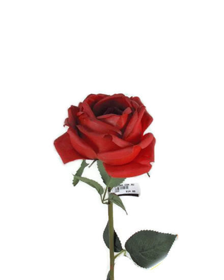 Real Touch David Austin Rose Spray GF60402-RD