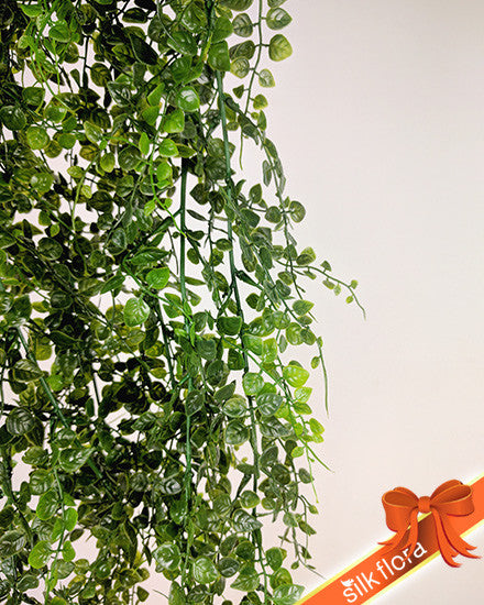 MAIDENHAIR FERN HANGING BUSH S2624