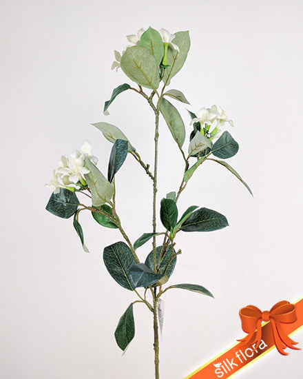 Stephanotis Spray S400