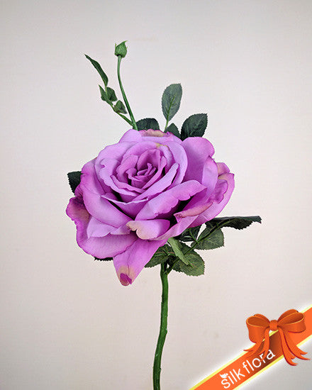 Large Open Rose S5714_FUCH