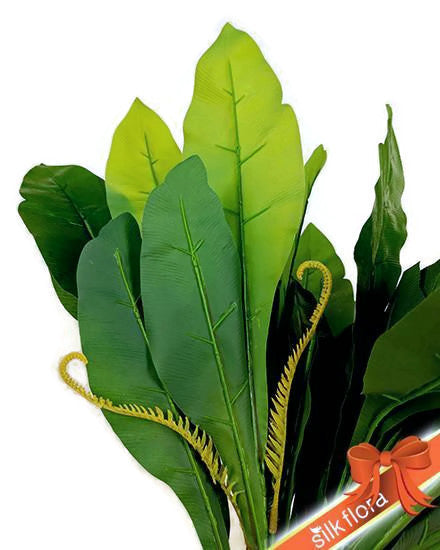 BIRD NEST FERN 36LVS S8818GRN