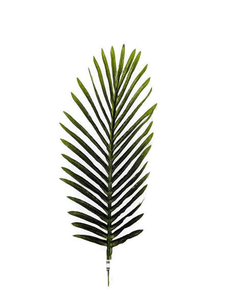 Small Palm Leaf LX0019