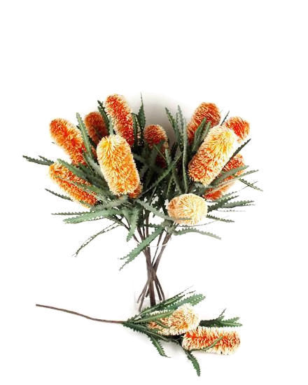 Double Banksia Spray N-DB-06-OR