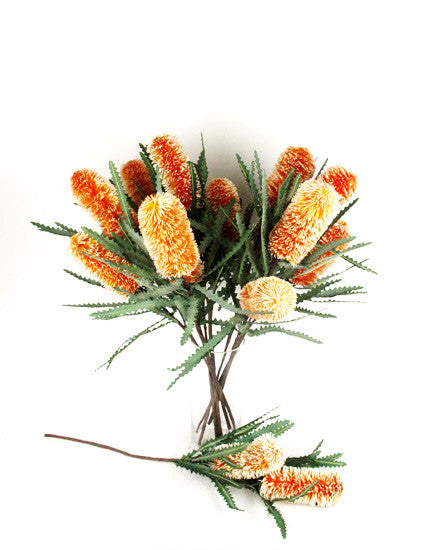 Double Banksia Spray N-DB-06