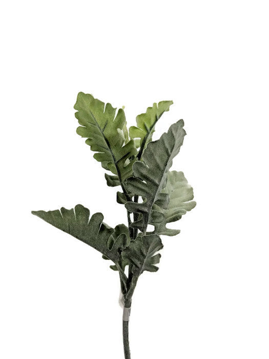 Dusty Miller Spray GF60561