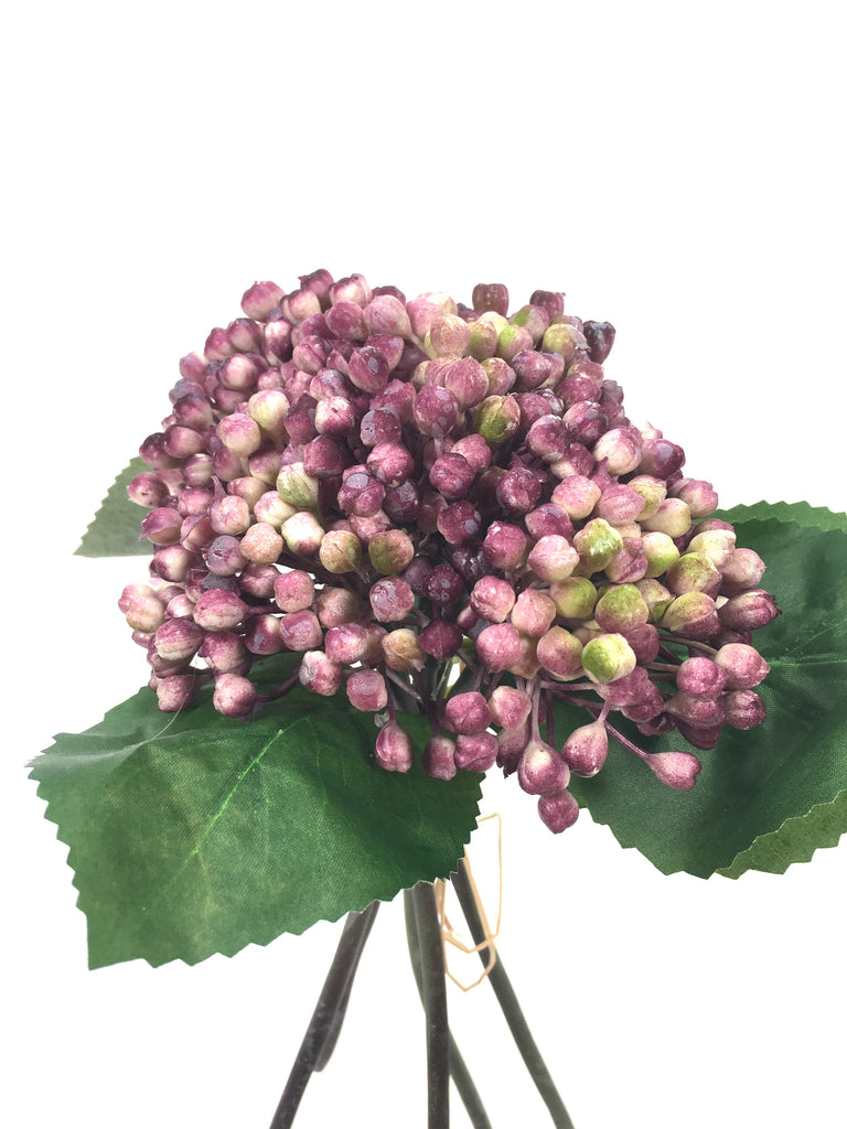 BERRY BUNCH EE0024-BL