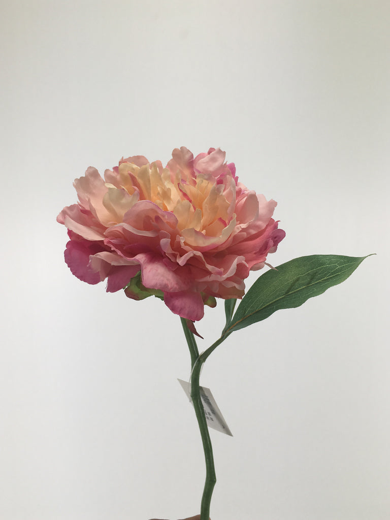 Single Open Peony S5761-PNK