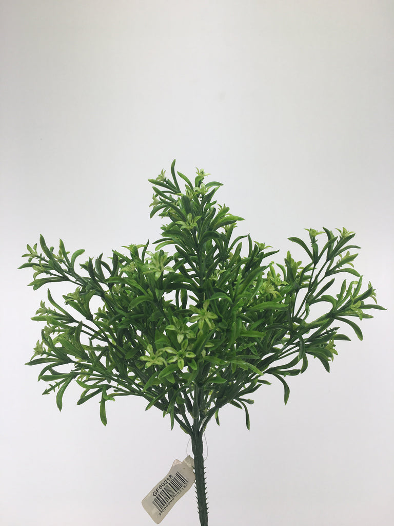 Star green bush GFF60218