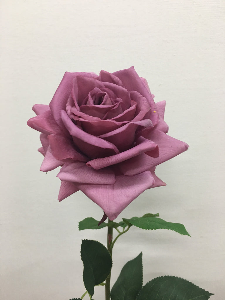 Real Touch Rose FB0078-MAUVE
