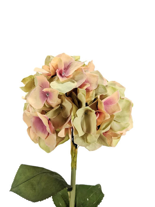 Large Hydrangea EE0038-PCH