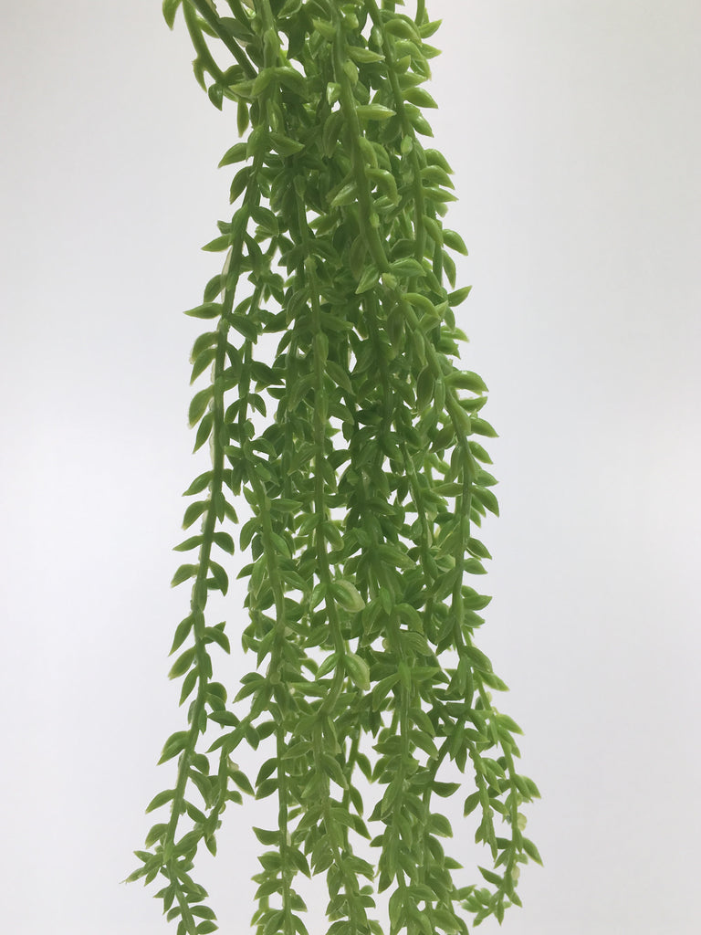 Mini hanging bush RH0026-LGR