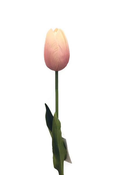 Touch Single Tulip MXTU012102-pink