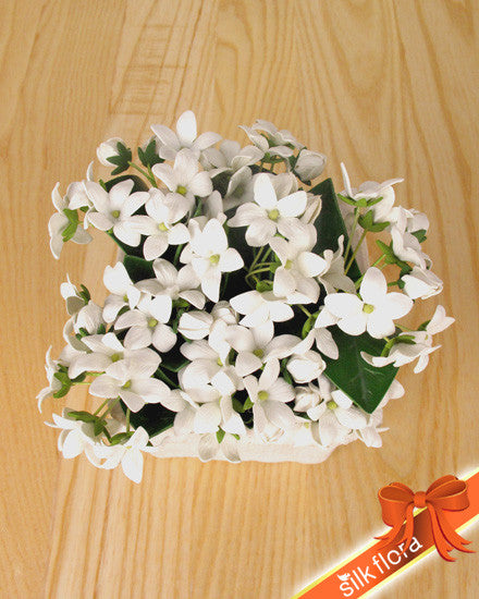Real Touch Stephanotis GL12380