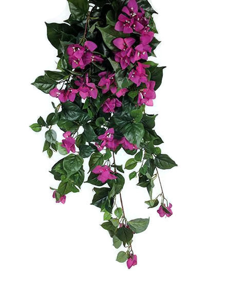 Bougainvillea Hanging Bush S2627-PNK