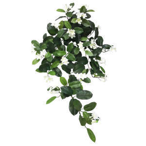 Hanging Stephanotis Bush S2616-WH