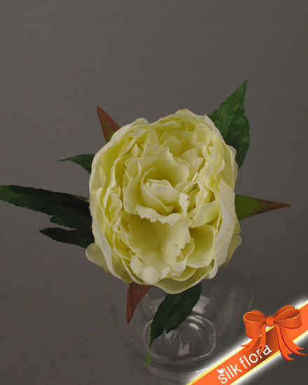 Single short Cream peony GF60195