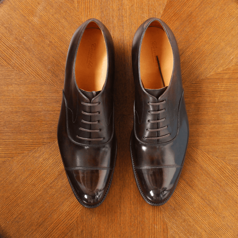 Corno blu - CYGNUS in Dark Brown Calf - Yeossal