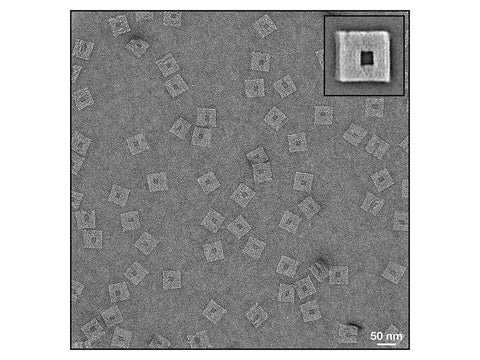 Exemplary TEM images of a DNA nanostructure