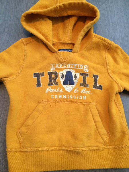 Pullover Hooded Sweater (Boys Size 18M)