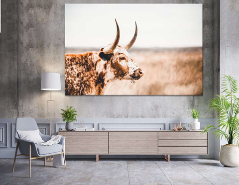 Longhorn Cow close-up №04134 Ready to Hang Canvas Print