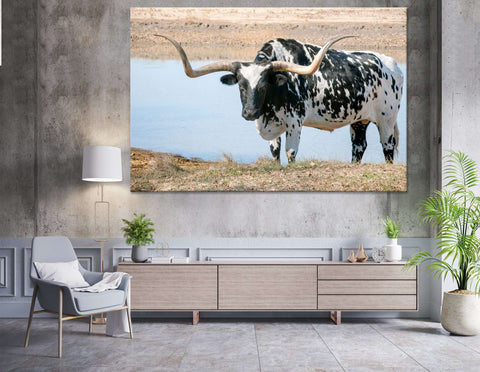 Black and White Longhorn Steer №04135 Ready to Hang Canvas Print