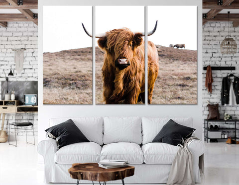 Highland Cow on Islay №04128 Ready to Hang Canvas Print