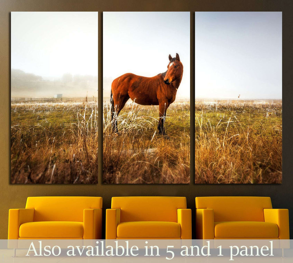 Lonely horse wall art №5003