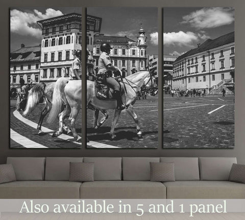Police horse canvas print №5014