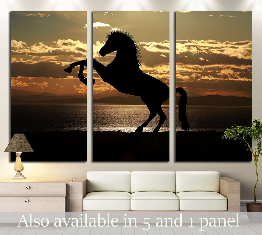 Sunshine and horse wall art №5015