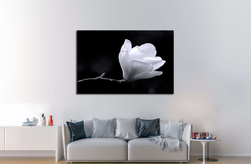 A black and white fine art portrait of the flower from a magnolia tree. №2747 Ready to Hang Canvas Print