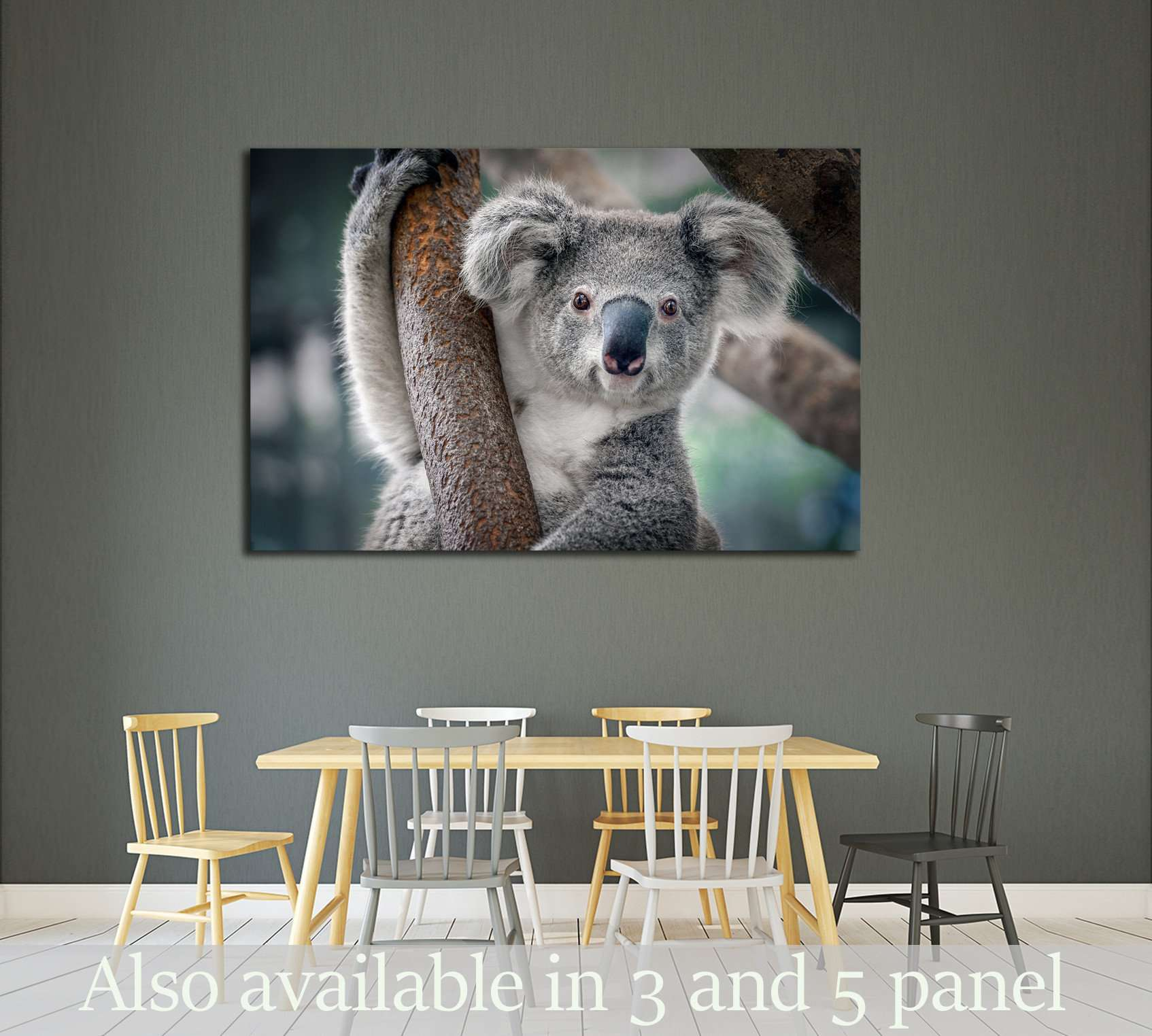 A cute koala №2378 Ready to Hang Canvas Print