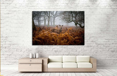A Deer in the fog, Richmond Park, London №2379 Ready to Hang Canvas Print