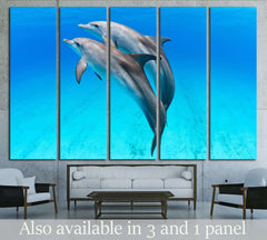 A playful dolphin duo in the seas of the Bahamas №2369 Ready to Hang Canvas Print