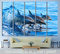 A spotted dolphin family leaping out of the clear blue Hawaii waters №2356 Ready to Hang Canvas Print