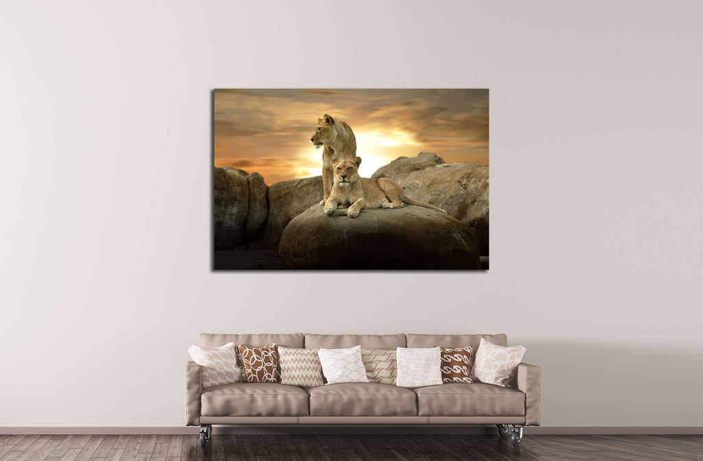 African Lion №2351 Ready to Hang Canvas Print