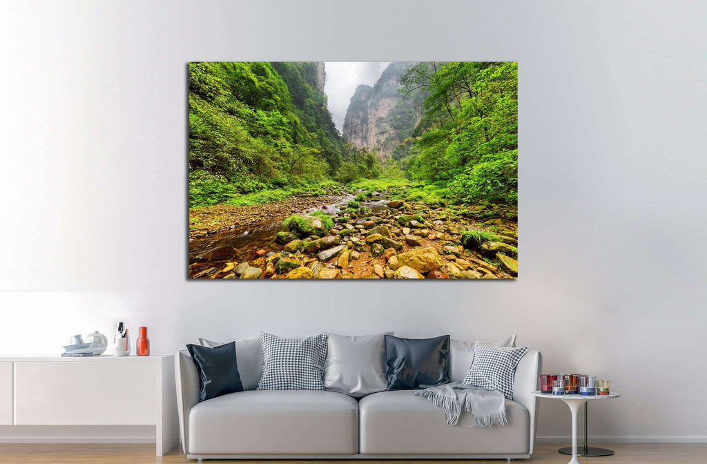 Amazing view of mountain river with crystal clear water,Zhangjiajie National Forest Park, Hunan Province, China №1991 - canvas print wall art by Zellart