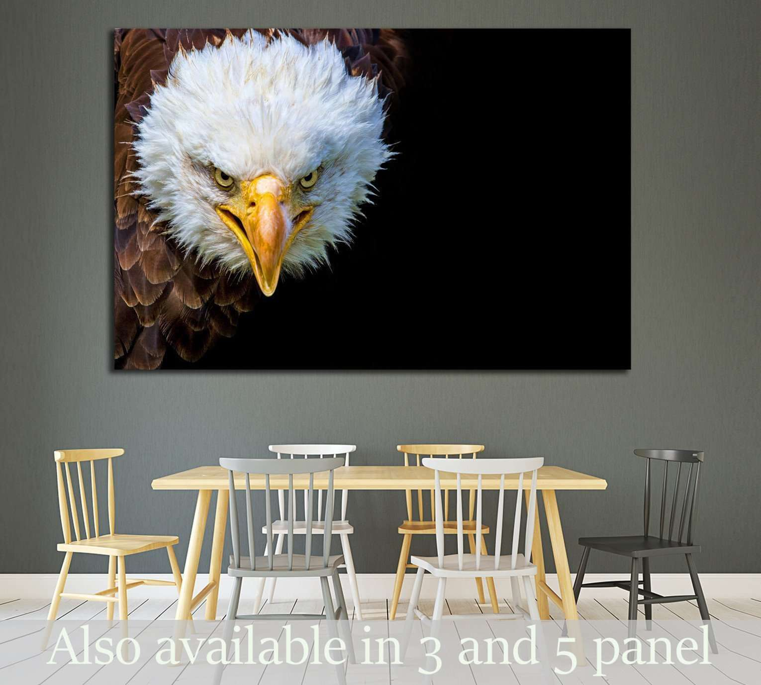 Angry north american bald eagle on black background №1863 - canvas print wall art by Zellart