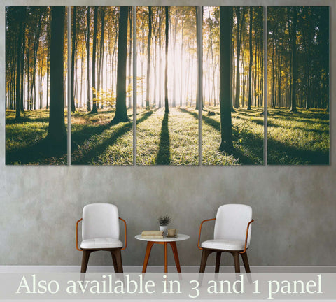 Autumn Forest №3012 Ready to Hang Canvas Print