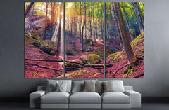 Autumn morning in mystical woods. Instagram toning №3093 Ready to Hang Canvas Print