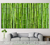Bamboo №17 Ready to Hang Canvas Print