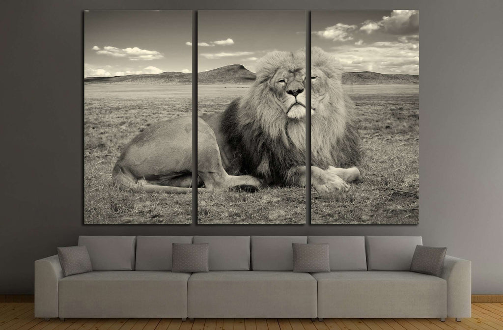 beautiful african lion, Wonderful image of african wildlife №2365 Ready to Hang Canvas Print