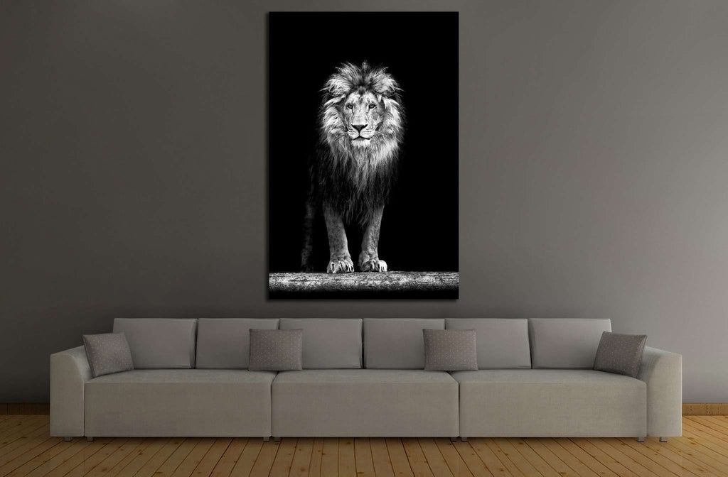 Beautiful Lion №189 Canvas Print