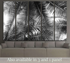 beautiful palms leaf on white background №2832 Ready to Hang Canvas Print