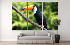 beautiful tucan, sitting on a branch №2788 Ready to Hang Canvas Print
