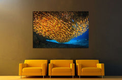 Beautiful underwater world, with corals and sponges. Nusa Penida, Indonesia №2380 Ready to Hang Canvas Print