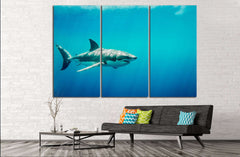 Big Shark №500 Ready to Hang Canvas Print